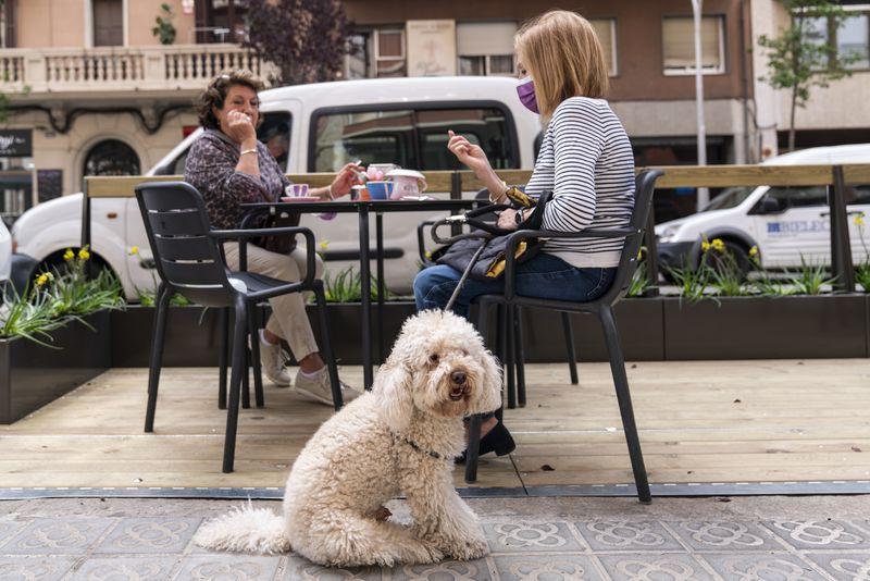 <div class='imageHoverDetail'>              <p class='imageHoverTitle twoLineBreak'>Dues dones prenen un cafè acompanyades d'un gos en una cafeteria amb una terr...</p>              <p class='imageHoverAutor oneLineBreak'>Autor: Mariona Gil</p>              <button class='imageHoverBtn'>Mostra els detalls de la imatge <span class='sr-only'>Dues dones prenen un cafè acompanyades d'un gos en una cafeteria amb una terr...</span></button>              </div>