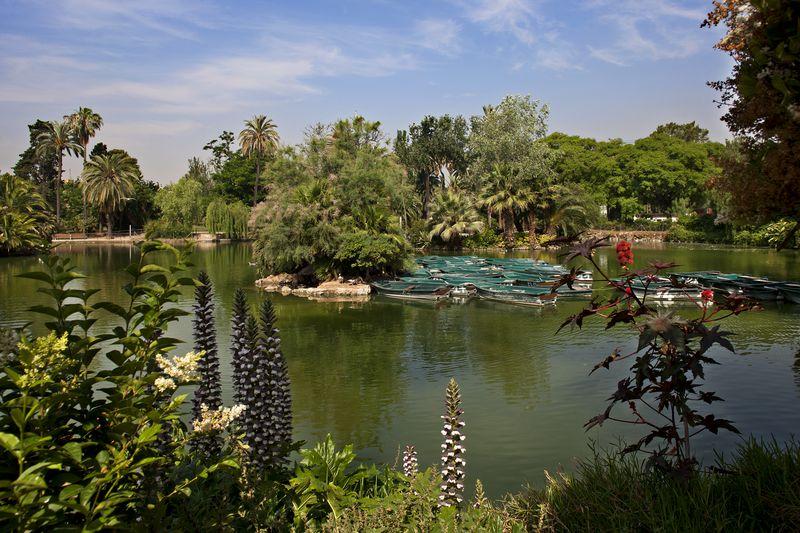 <div class='imageHoverDetail'>              <p class='imageHoverTitle twoLineBreak'>Parc de la Ciutadella Zona del llac</p>              <p class='imageHoverAutor oneLineBreak'>Autor: Pepe Navarro</p>              <button class='imageHoverBtn'>Mostra els detalls de la imatge <span class='sr-only'>Parc de la Ciutadella Zona del llac</span></button>              </div>