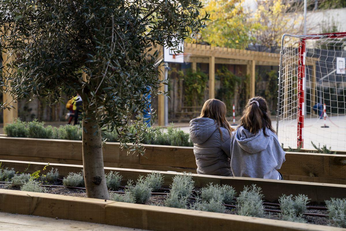 <div class='imageHoverDetail'>              <p class='imageHoverTitle twoLineBreak'>Dues nenes conversen assegudes als bancs de les jardineres de l'Escola Els Ll...</p>              <p class='imageHoverAutor oneLineBreak'>Autor: Mariona Gil</p>              <button class='imageHoverBtn'>Mostra els detalls de la imatge <span class='sr-only'>Dues nenes conversen assegudes als bancs de les jardineres de l'Escola Els Ll...</span></button>              </div>